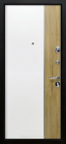 Дверь с молдингом DR200