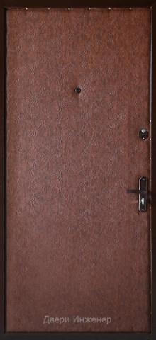 Дверь с ковкой DR256