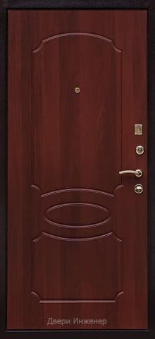 Порошковая дверь DR219