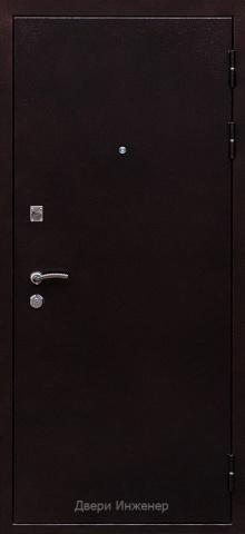 Порошковая дверь DR213