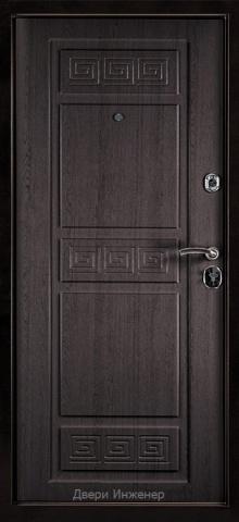 Порошковая дверь DR460