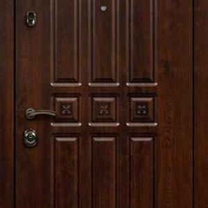 Дверь с терморазрывом DR303